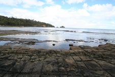 Free Tessellated Pavement Stock Image - 919721