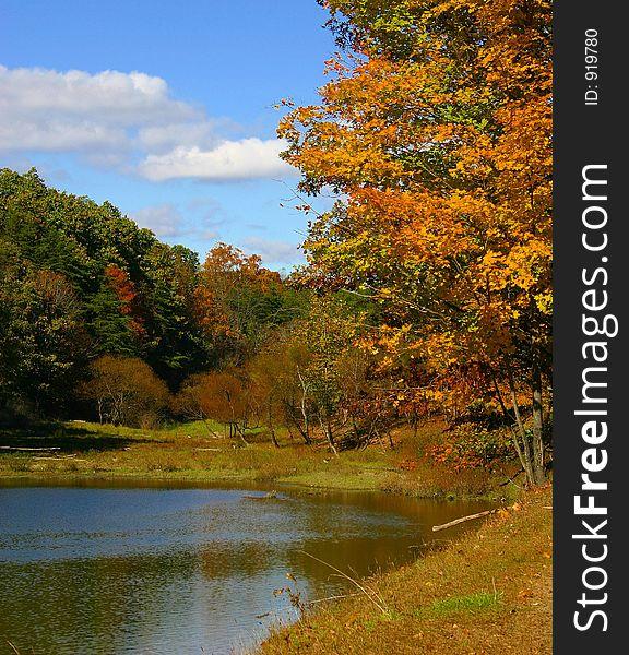 Fall Scene of Lake and Trees