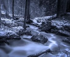 Free Creek In Snowy Forest Stock Photography - 91054162