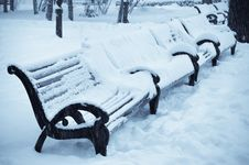 Free Benches In The Winter Park Stock Photos - 9117033