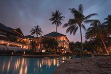 Free Palm Trees At Night Stock Photo - 91174690