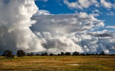 Free Brown Grass Field Under Cloudy Sky Royalty Free Stock Photography - 91446937
