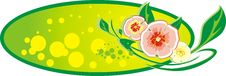 Free Decorative Banner. Bouquet Of Flowers Royalty Free Stock Image - 9152496