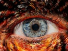 Free Eye, Close Up, Iris, Eyelash Stock Photography - 91631542