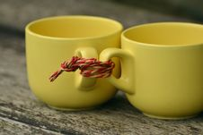 Free Two Cups Tied Together Royalty Free Stock Photos - 91664758