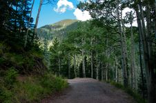 Free Inner Basin Trail Royalty Free Stock Images - 91754819