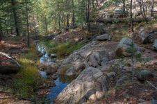 Free Fred Haught Trail 141 Royalty Free Stock Photos - 91755188