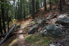 Free Fred Haught Trail 141 Royalty Free Stock Images - 91755339
