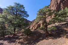 Free Red Mountain Trail No. 159 Stock Photography - 91755942