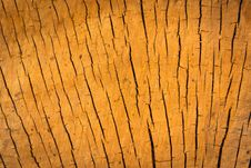 Free Wood Cracks Stock Photo - 91755990