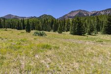 Free Inner Basin Trail No. 29 Royalty Free Stock Images - 91756099