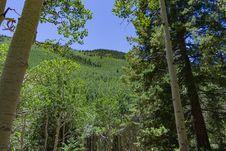 Free Inner Basin Trail No. 29 Stock Photos - 91756143