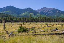Free Around The Peaks Loop: FR 418 Stock Images - 91756204
