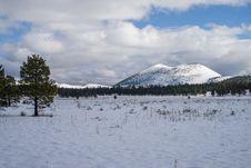 Free Winter In Bonito Park Royalty Free Stock Photography - 91756547