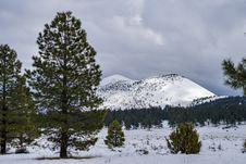 Free Winter In Bonito Park Stock Image - 91756551