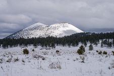 Free Winter In Bonito Park Stock Photography - 91756572