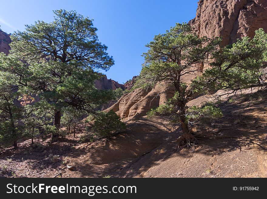 Red Mountain Trail No. 159