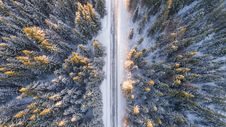 Free Aerial View Of Road Through Fir Forest Stock Photos - 91760213