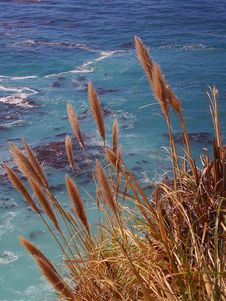 Free Big Sur Cove Stock Image - 91771581