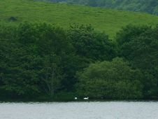 Free Lough Gill 2 Stock Photos - 91781413
