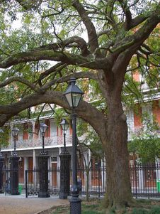 Free New Orleans 6 Royalty Free Stock Image - 91783406