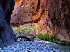 Free Zion Narrows 11 Royalty Free Stock Images - 91792469