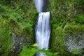 Free Multnomah Falls Stock Images - 921724