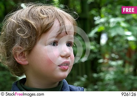 Free Surprised Boy Royalty Free Stock Image - 926126