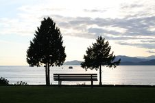 Free Bench And Trees Stock Image - 924071
