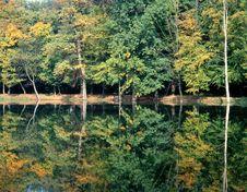 Free Autumn Stock Photography - 926242