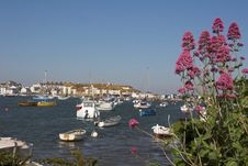 Free Purple Flowers With Houses, Sea & Boats Royalty Free Stock Photos - 926998