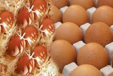 Free Egg Production Royalty Free Stock Image - 92056766