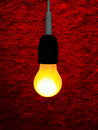 Free Yellow Bulb Stock Photography - 9213442