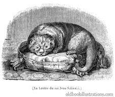 Free King John III Sobieski's Otter Royalty Free Stock Image - 92136206