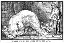 Free White Bear's Pit Royalty Free Stock Photos - 92140888