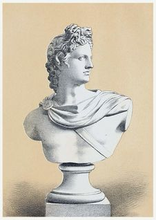 Free Bust Of Apollo Royalty Free Stock Image - 92141646
