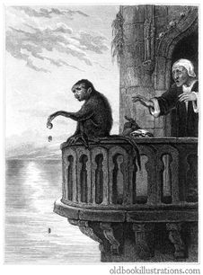 Free The Miser And The Monkey Royalty Free Stock Photography - 92146287