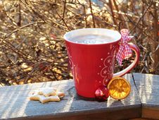 Free Cup Of Cocoa And Biscuits Royalty Free Stock Photo - 92160445
