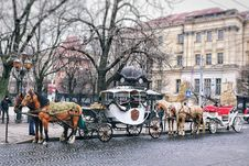 Free City Horse And Carriage Stock Photos - 92160883
