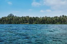 Free Blue Sea With Distance At Palm Trees Under Blue Sky During Daytime Royalty Free Stock Image - 92161326