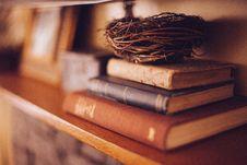 Free Old Books Wood Shelf Birds Nest Warm Tones Royalty Free Stock Photography - 92161397