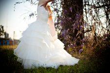 Free Bride White Wedding Dress Outdoors Green Grass Wisteria Vines Royalty Free Stock Photos - 92162158