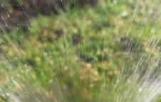 Lawn Sprinkler Stock Photo