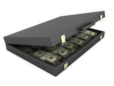 Free Suitcase With Money Stock Photos - 9220533