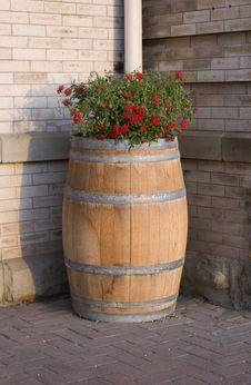 Free Flower Barrel Stock Images - 9221584