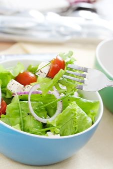 Free Salad With Greens Stock Photos - 9226153