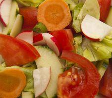 Free Spring Vegetables Royalty Free Stock Photos - 9228358