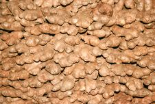 Background Of Dry Ginger Roots Stock Photography