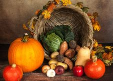 Free Autumn Gourds Still Life Royalty Free Stock Photos - 92236468