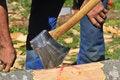 Free Axe In A Log Stock Photos - 9232723